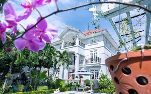 Thao Dien neighbor